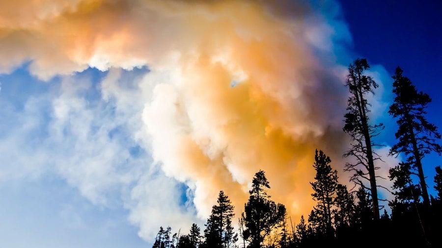 Preparing For the 2015 Wildfire Season