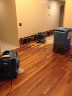 Are Hardwood Floors Salvageable After Water Damage?