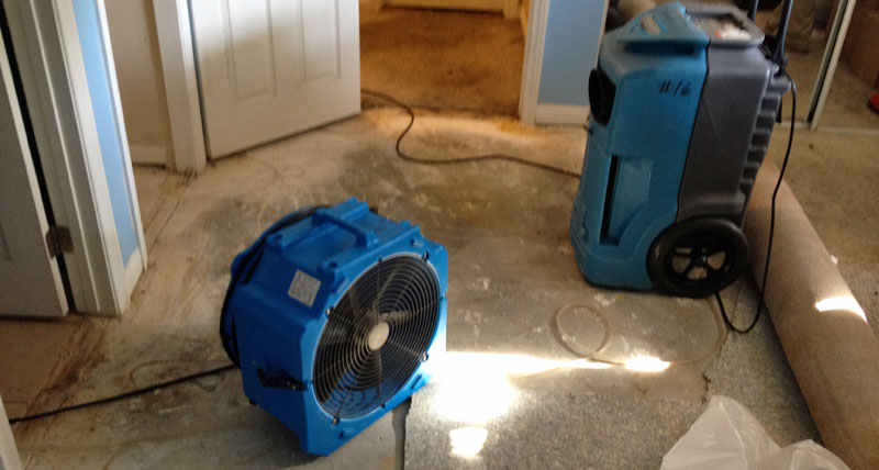 Four Degrees of Water Damage