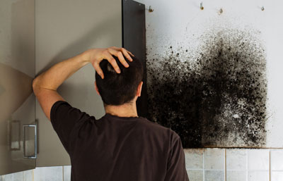 3 Reasons To Get Mold Cleaned Up Immediately