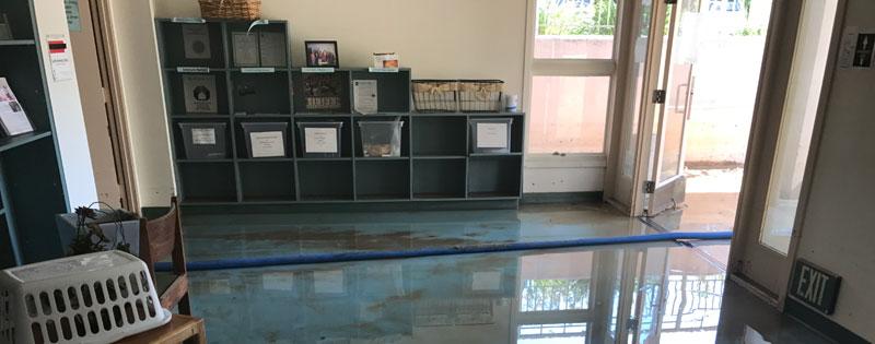 Water Damage Restoration Chula Vista, California