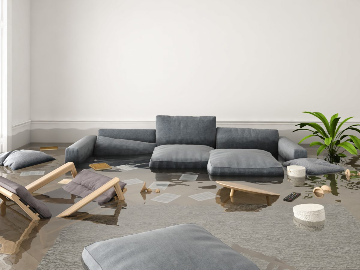 Water Damage Repair: All the Tips You Should Know